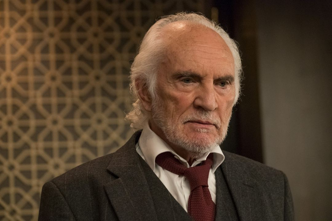 Murder Mystery : Photo Terence Stamp