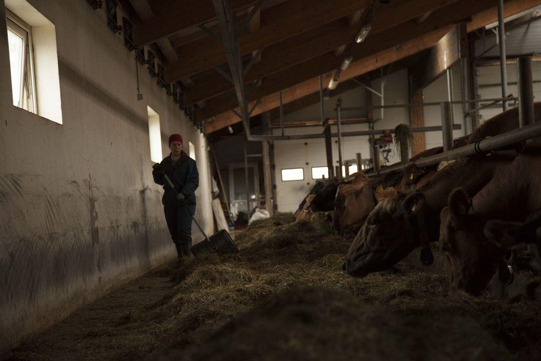 MJÓLK, La guerre du lait: Arndís Hrönn Egilsdóttir