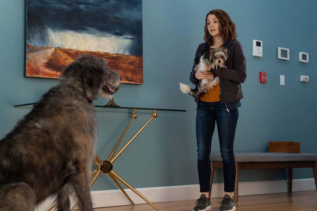 Mes autres vies de chien : Photo Kathryn Prescott