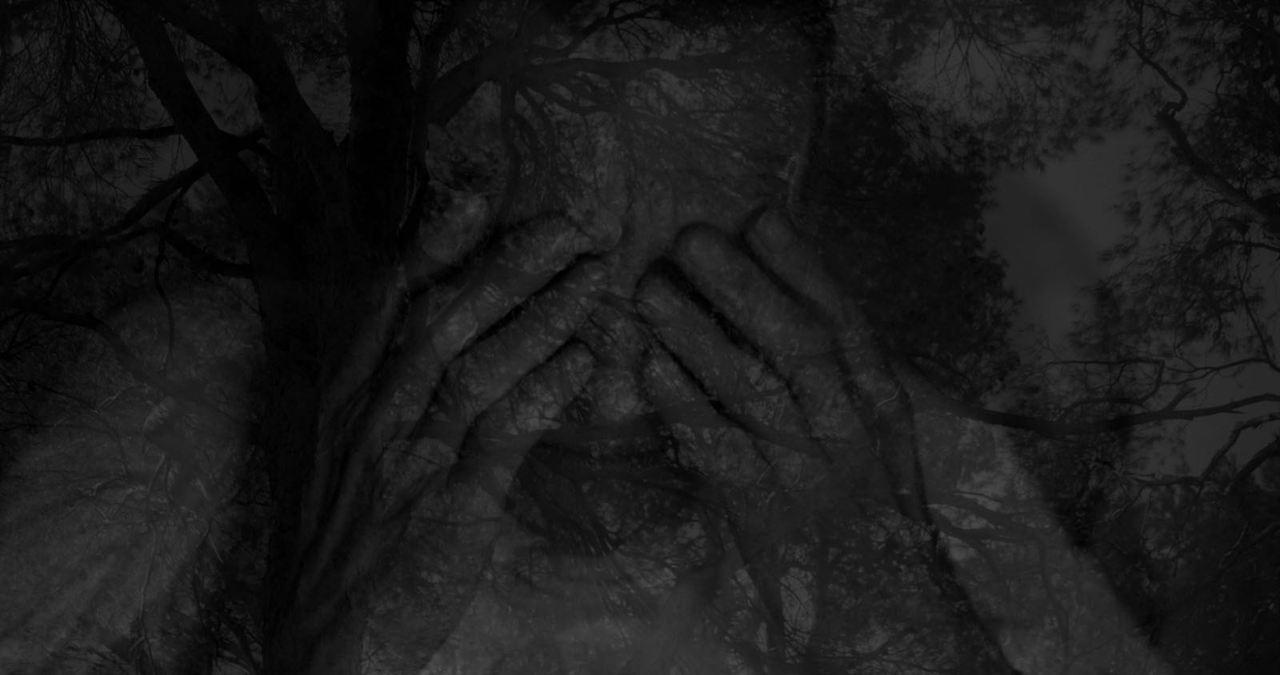 Les Mélancolies de Sade: Didier Sauvegrain