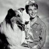 Lassie (1954) Saison 1