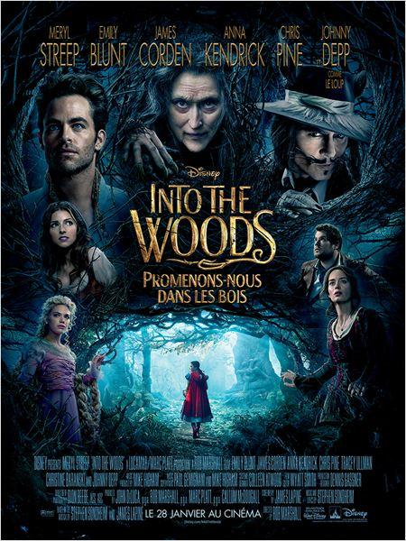 Into the Woods, Promenons-nous dans les bois ddl